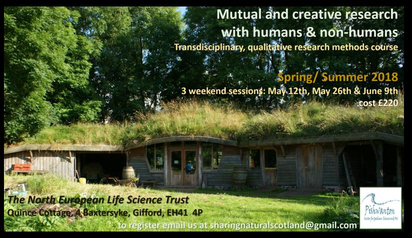 Mutual and Creative Research Summer 2018 Pishwanton Wood